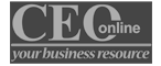 CEO Online published Broadspring Consulting